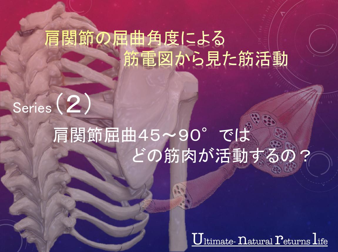 肩関節の屈曲角度による筋電図から見た筋活動 series2:肩関節屈曲45〜90°ではどの筋肉が活動するの?はじめにまとめ