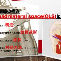 肩関節の痛み OLS QLSSについて
